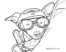 Coloring picture of dog with harley hat and doggles on at Myrtle Beach South Carolina Bike Week. Based on photo by Larry Grubbs.