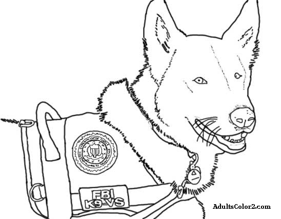 Line drawing of Dolce, FBI therapy dog.