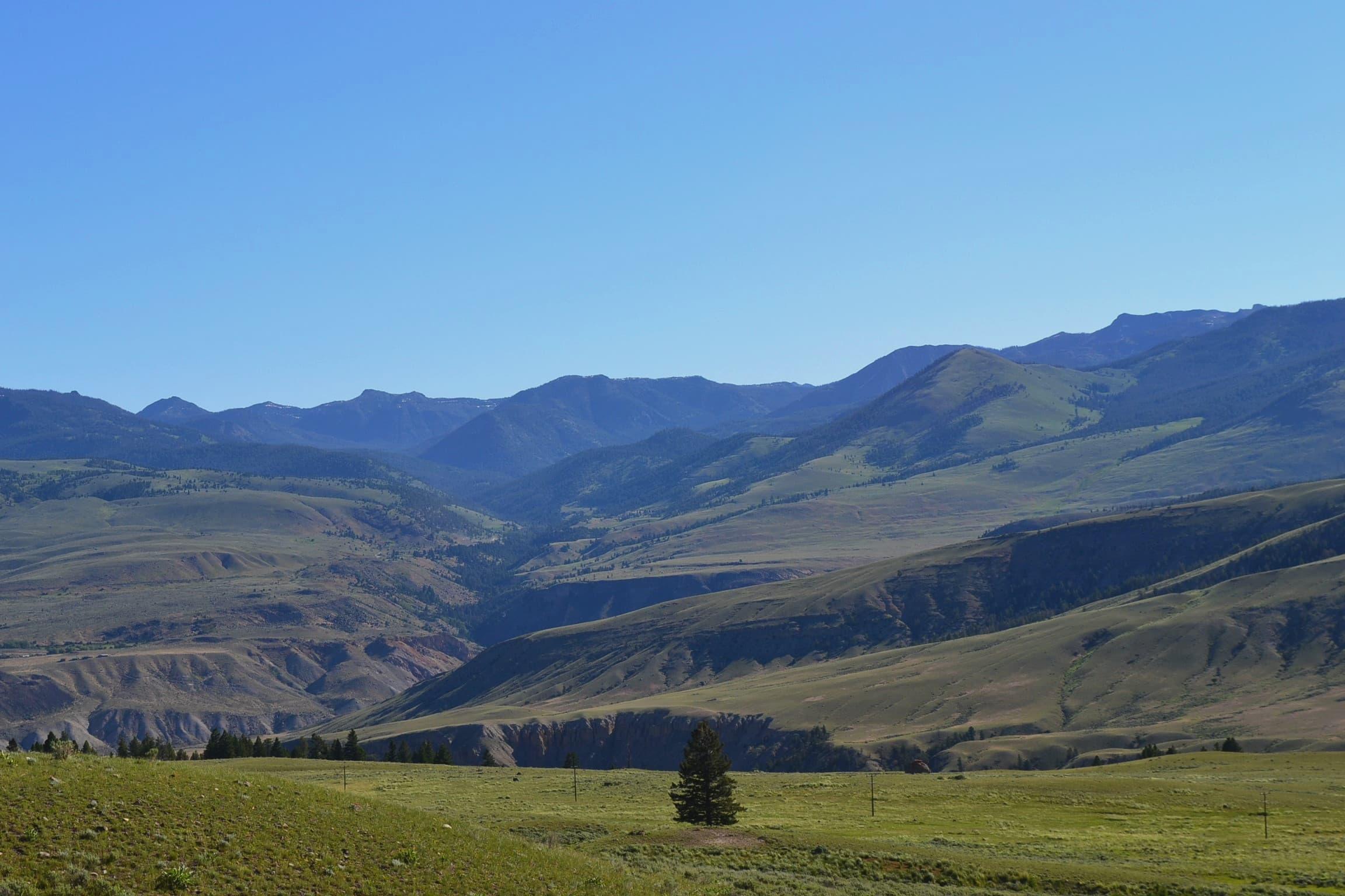 Valley vista Yellowstone.