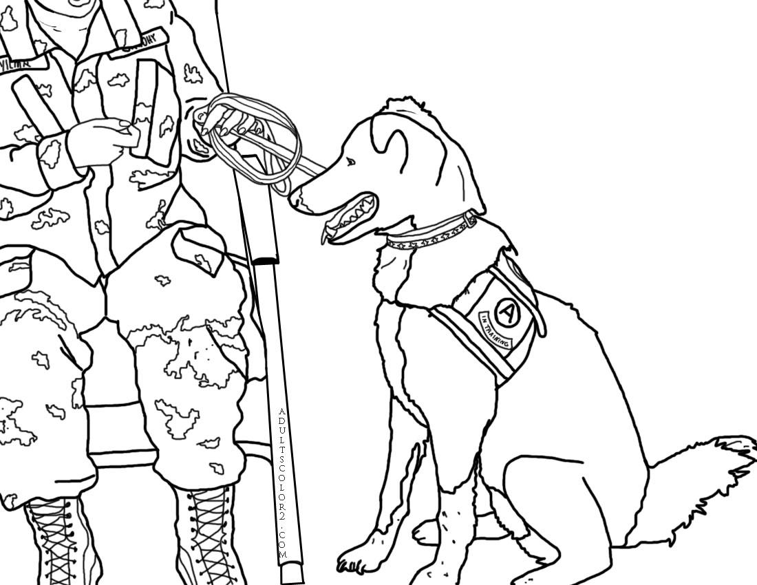 Training army dog.