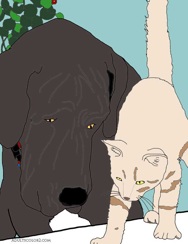 Colored in drawing of a cat and dog looking at something.