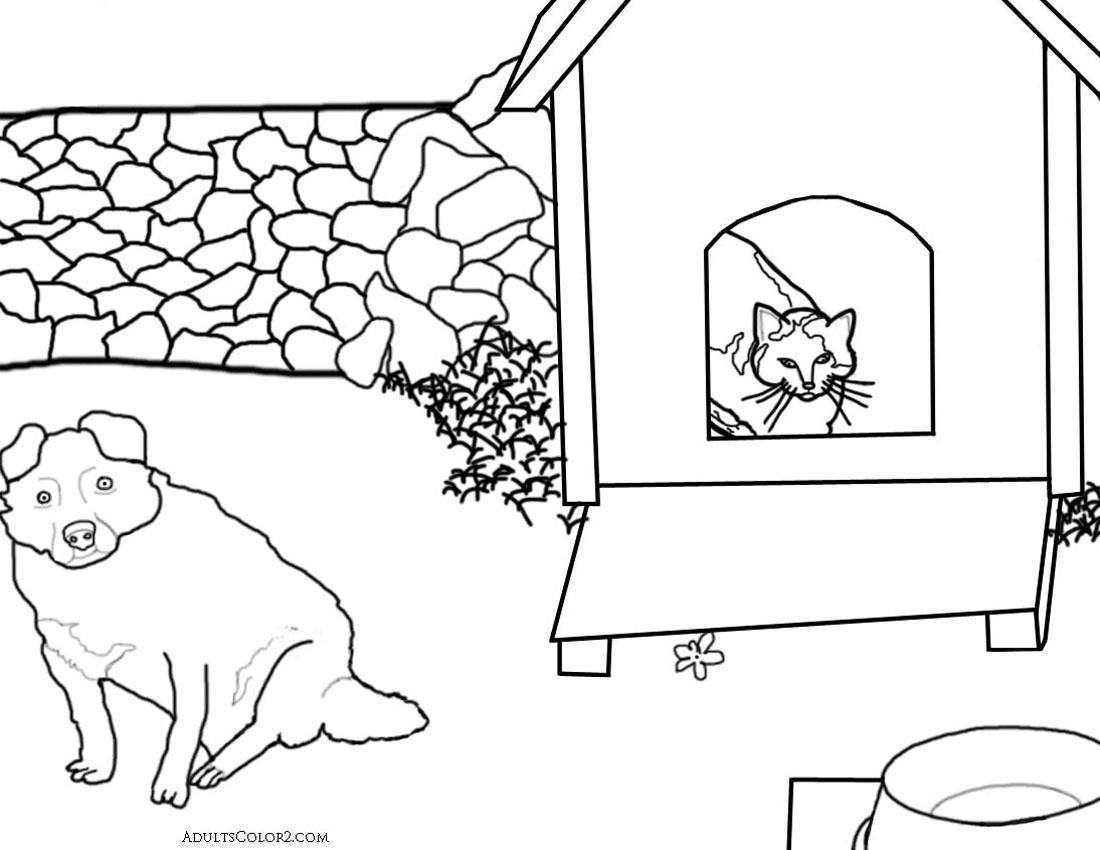 Cat in dog house.