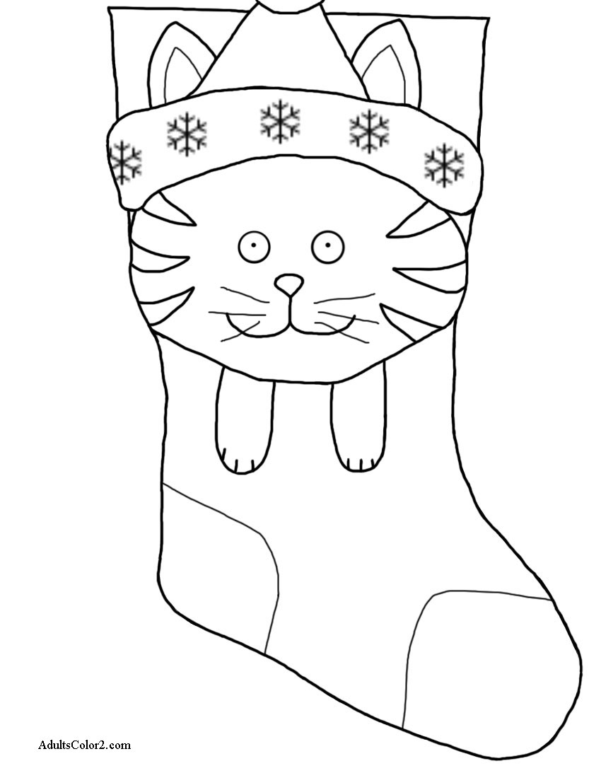 Cat face and paws on stocking.