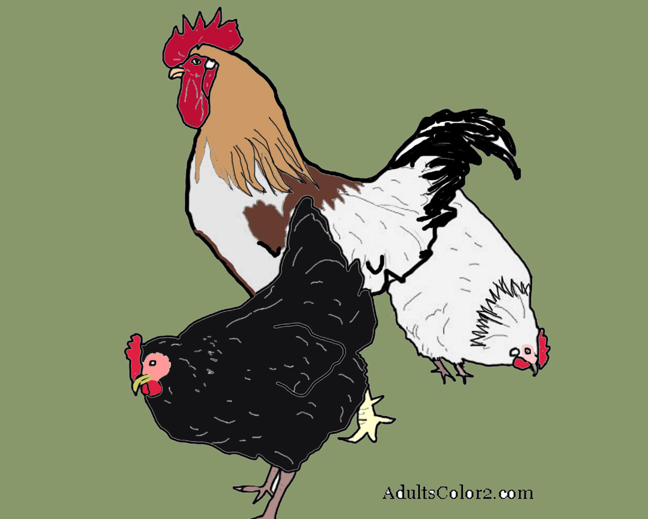 Two hens with a rooster.