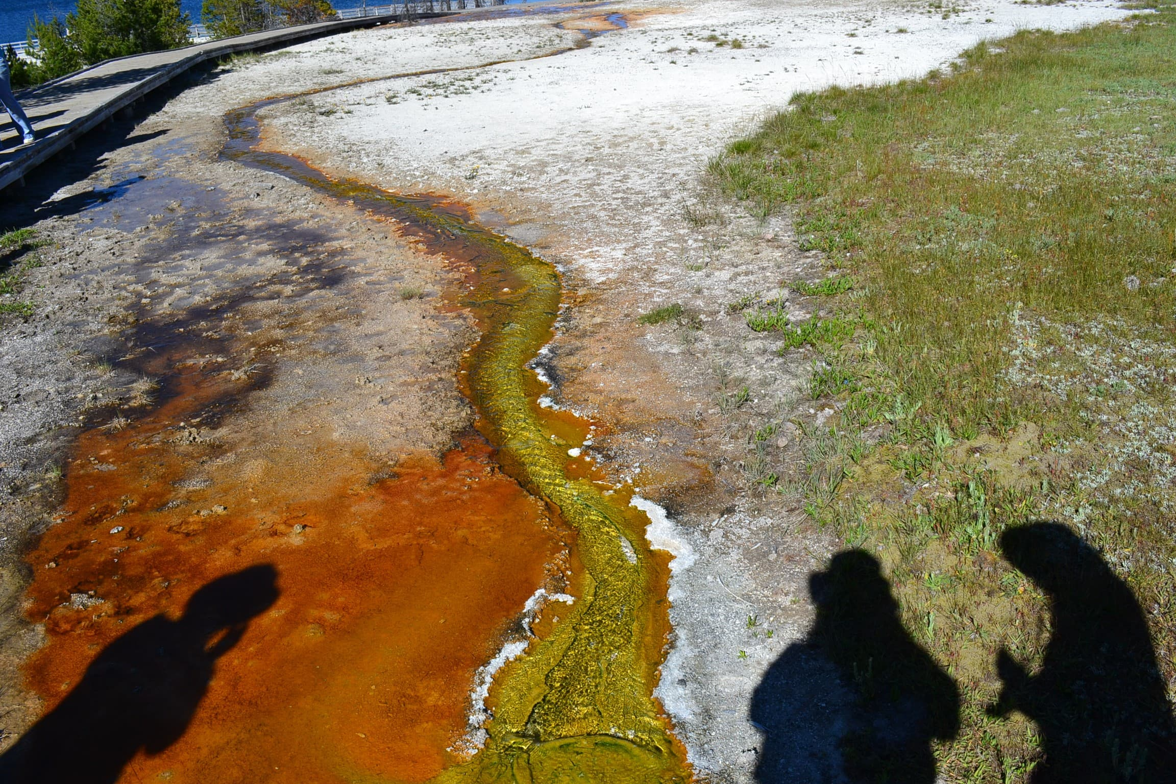 Colorful runoff from a hot spring.