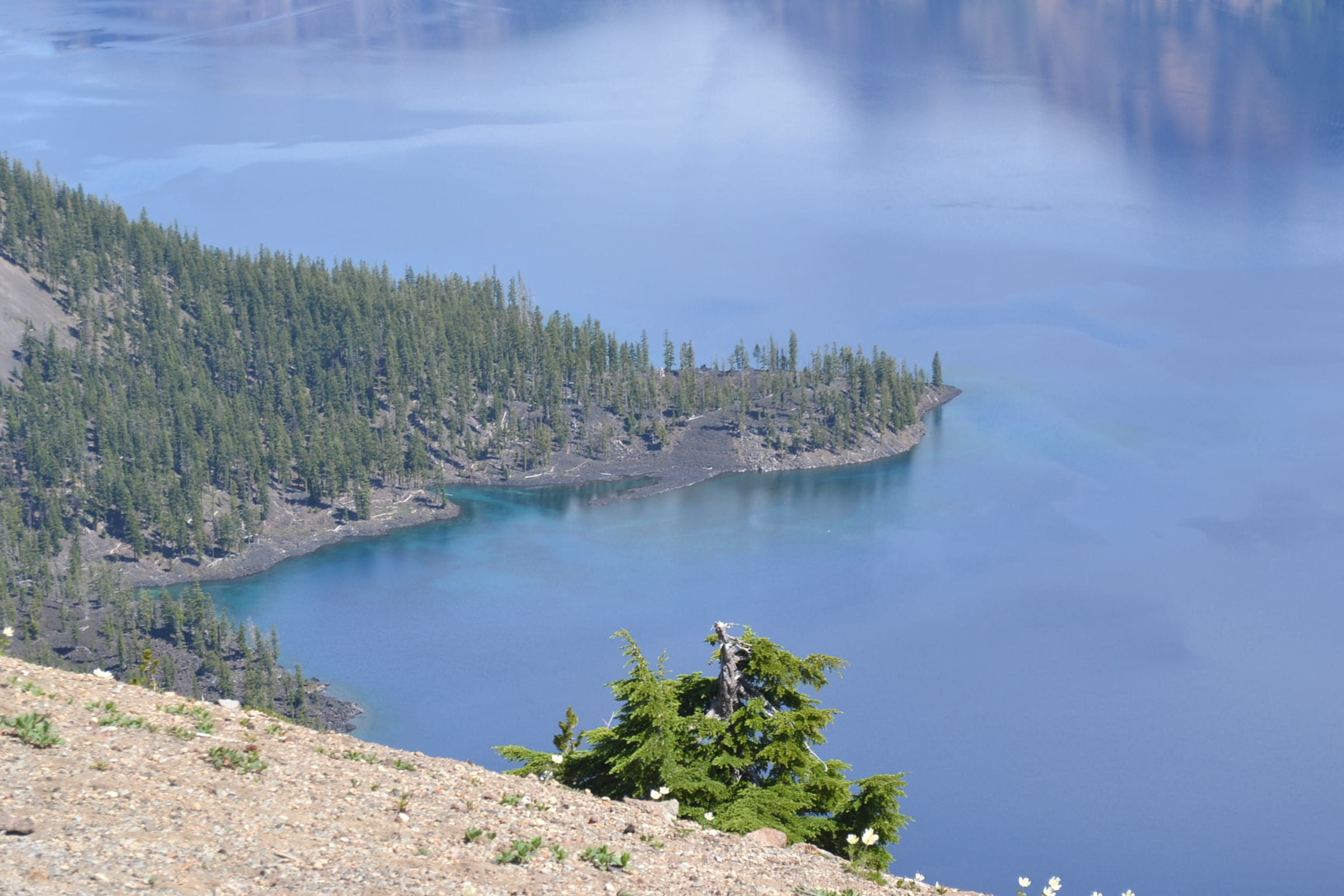 Shoreline view of Crater Lake.
