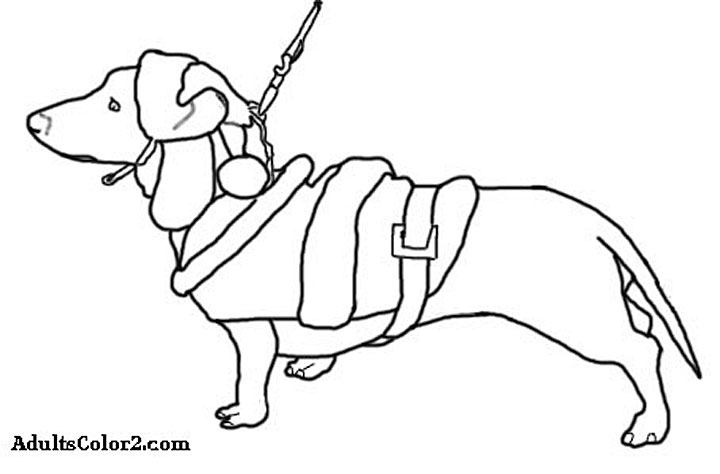 Line Drawing Dachshund : Dogs in costumes holiday hounds