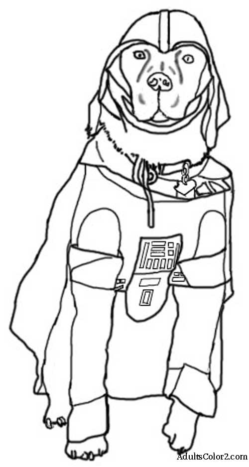 Dog Darth Vader Costume.