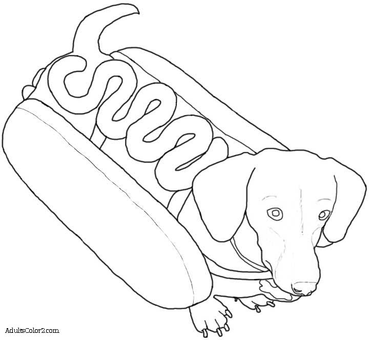 Dachshund in a hot dog suit.