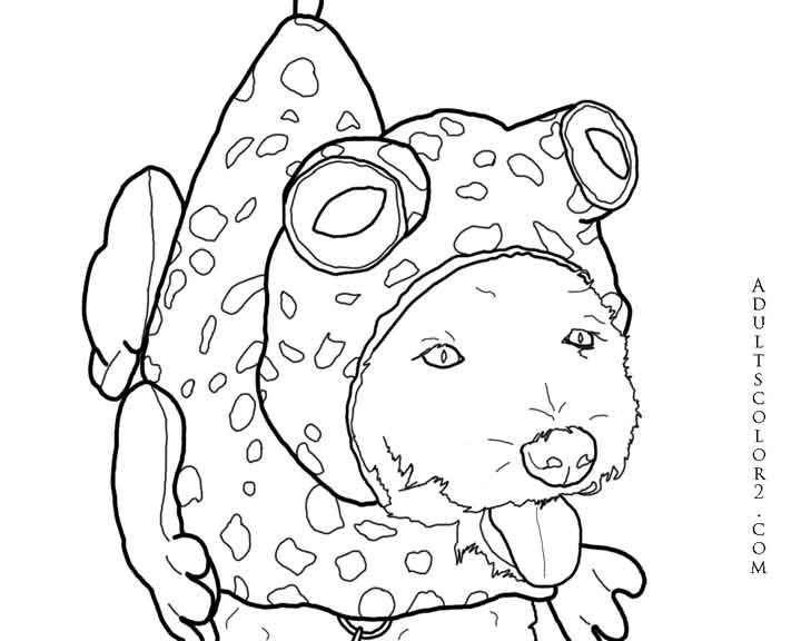 Image Result For Let Doodle Coloring