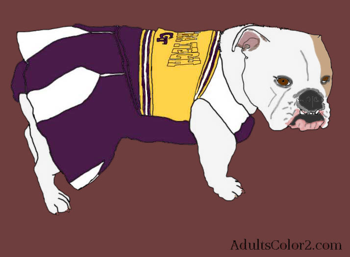 Dog in cheerleader costume.