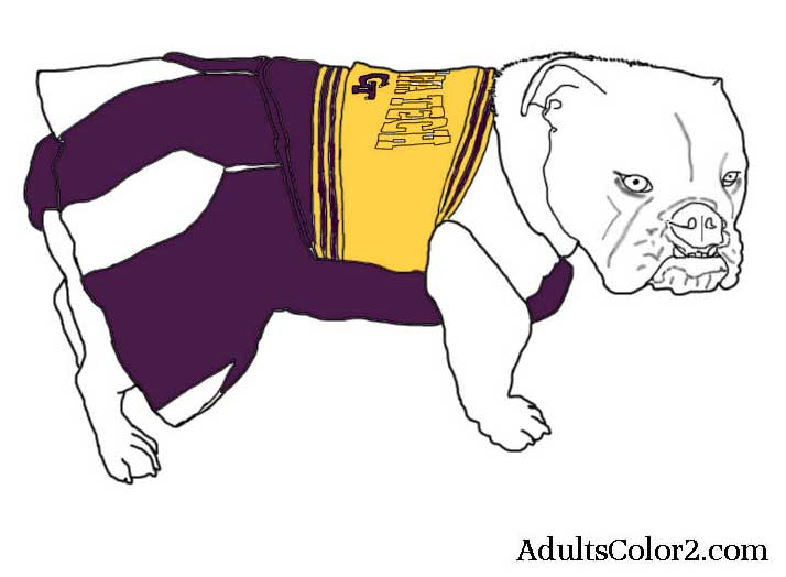 Pup in a colored in cheerleading outfit.