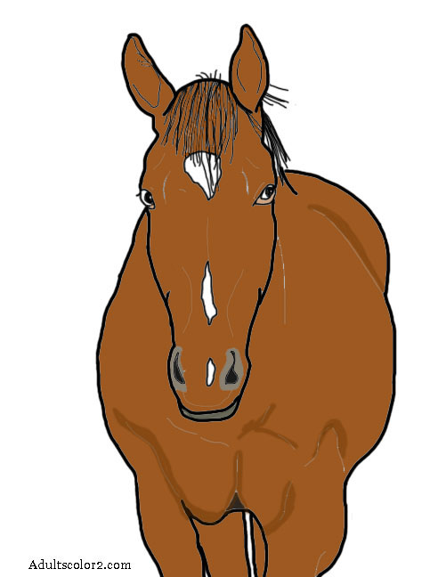 Brown horse.