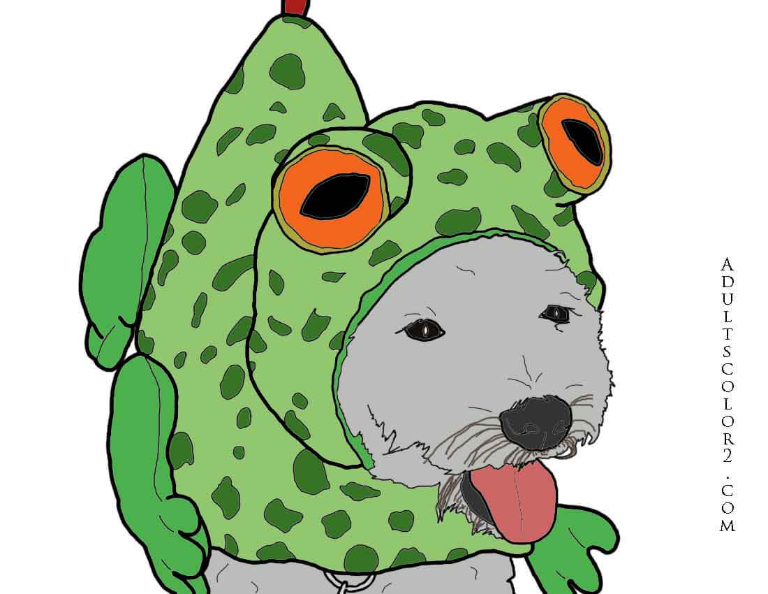 Colorful drawing of a lively dog in his frog costume.