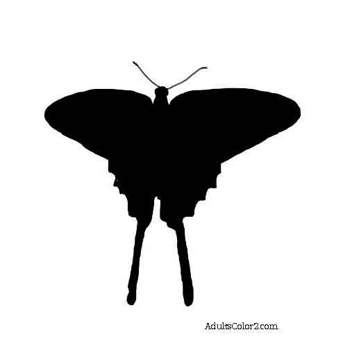 Silhouette of a flying zebra swallowtail butterfly