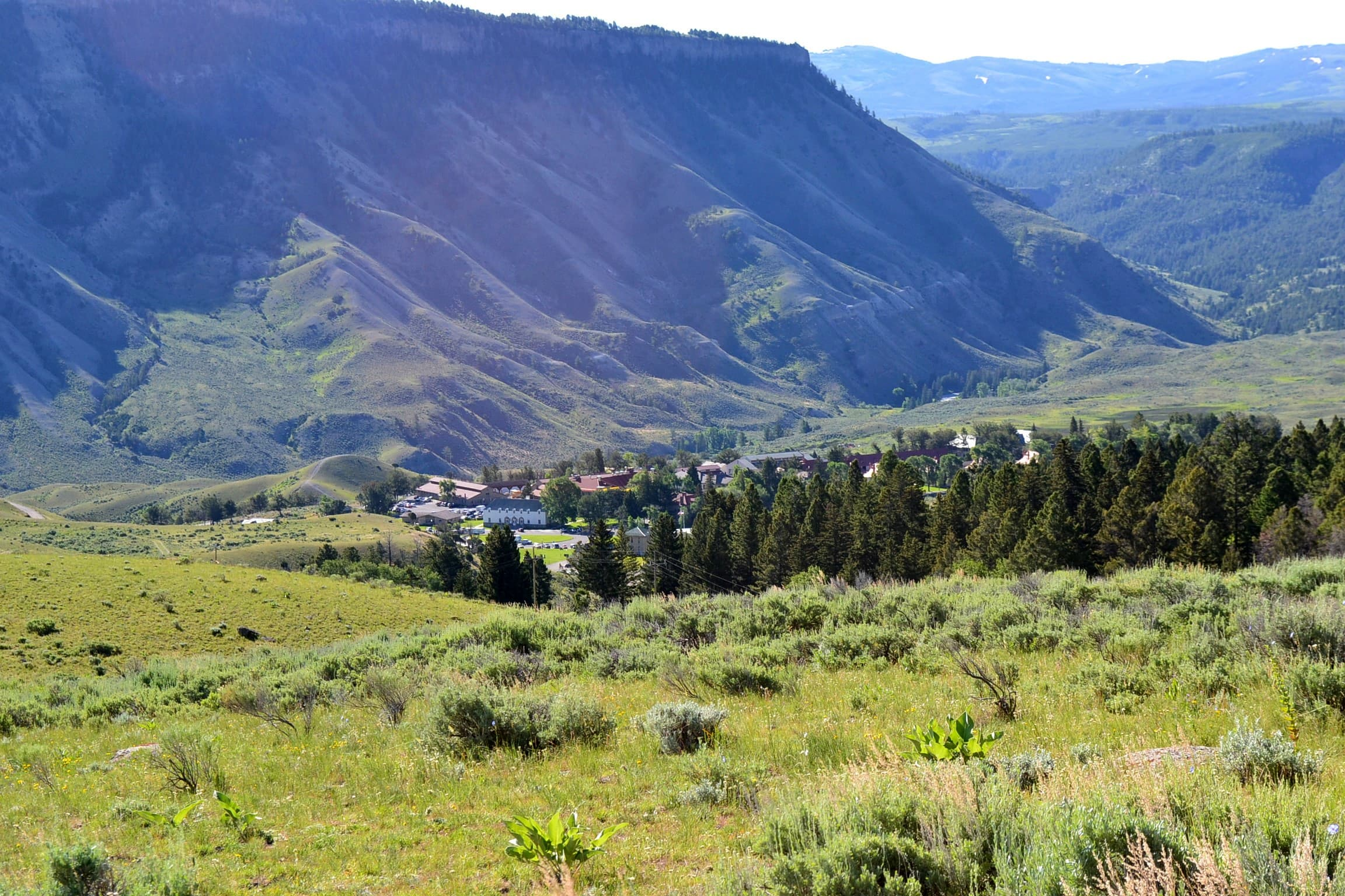 A view of Mammoth Hot Springs in the distance from above.