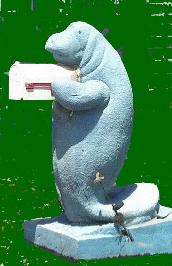 My photo of a manatee mailbox sculpture.
