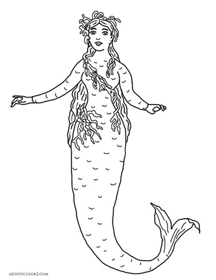 Little Mermaid costume from 1887.