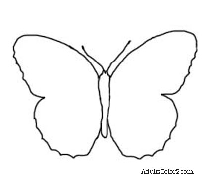 Butterfly Outline Or Silhouette