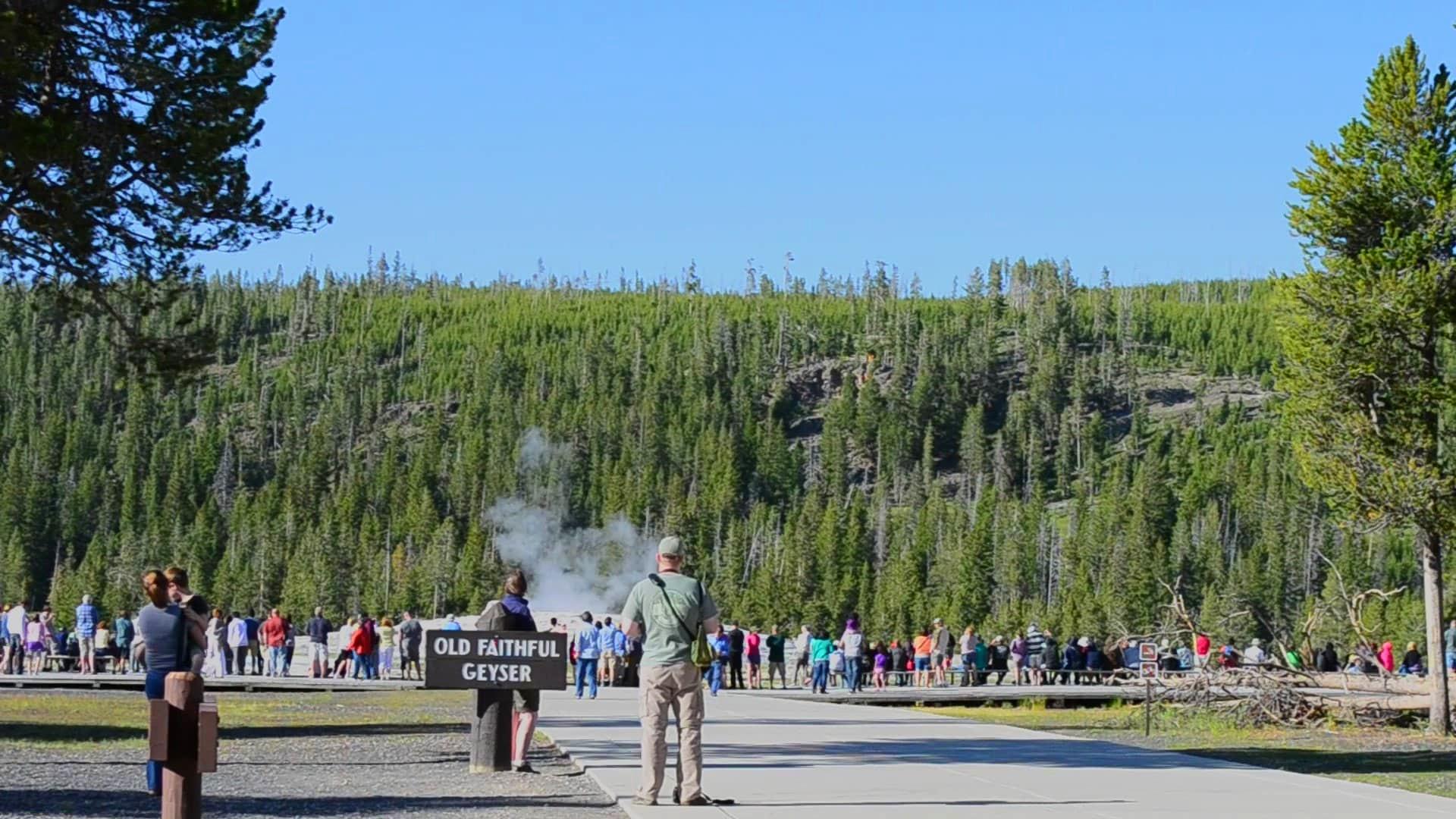 Old Faithful geyser Yellowstone.