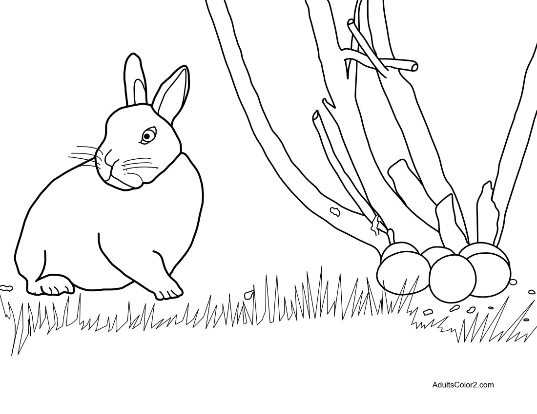Drawing of Easter bunny caught on the act.