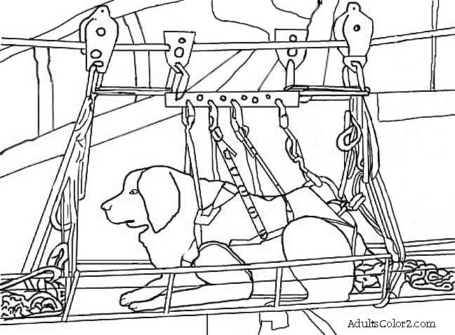 Line drawing of 9/11 search dog.