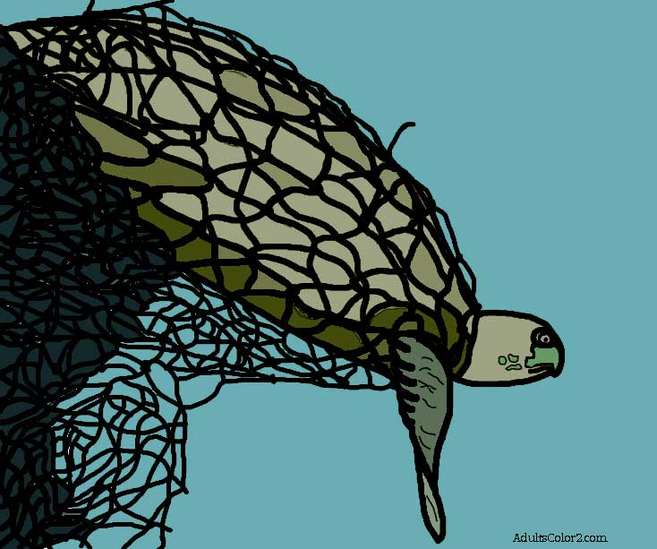 Color version of turtle trapped in net coloring page.