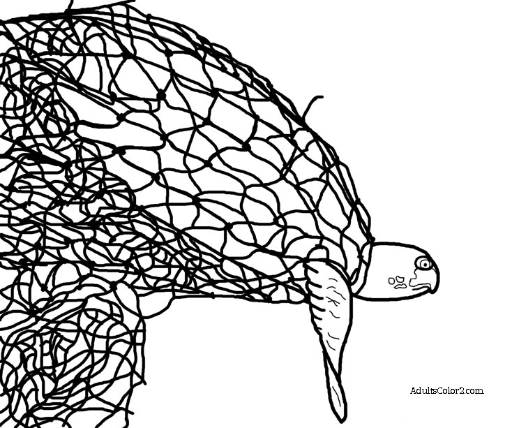 Drawing of a sea turtle trapped in a ghost net.