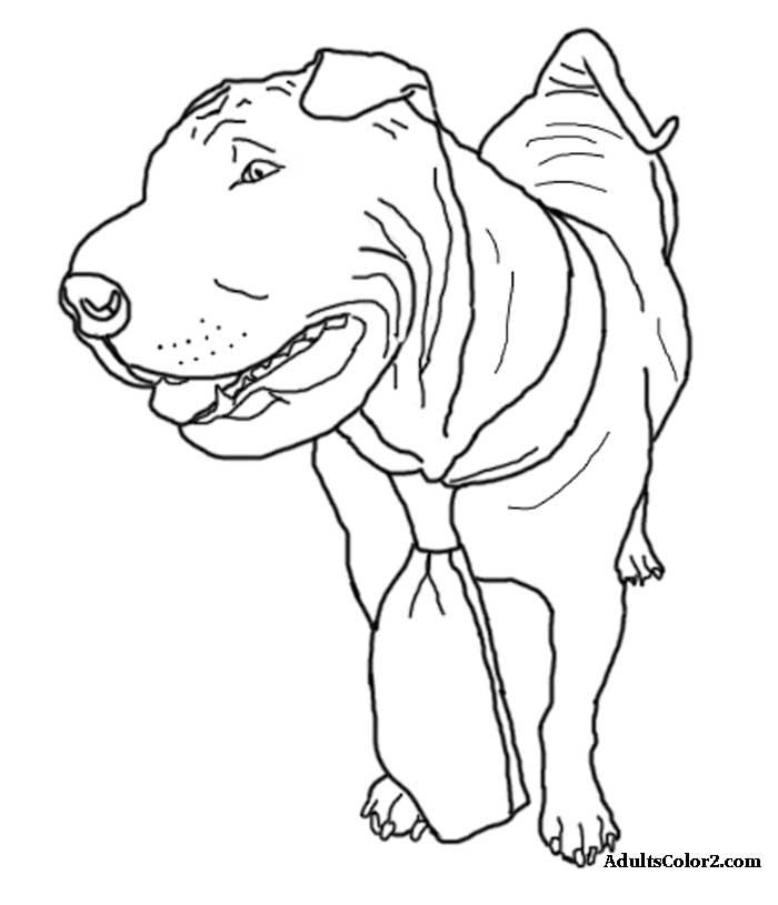 Shar Pei wearing a tie coloring page at AdultsColor2.com