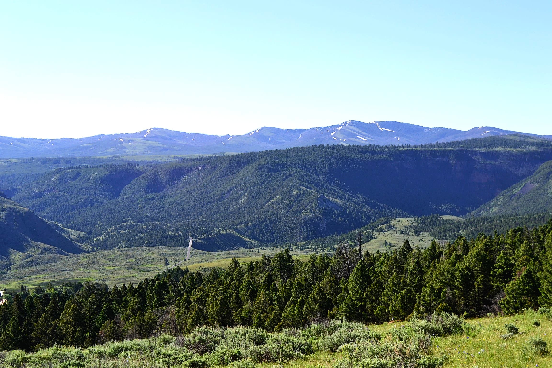 Looking north towards Montana from the trail.