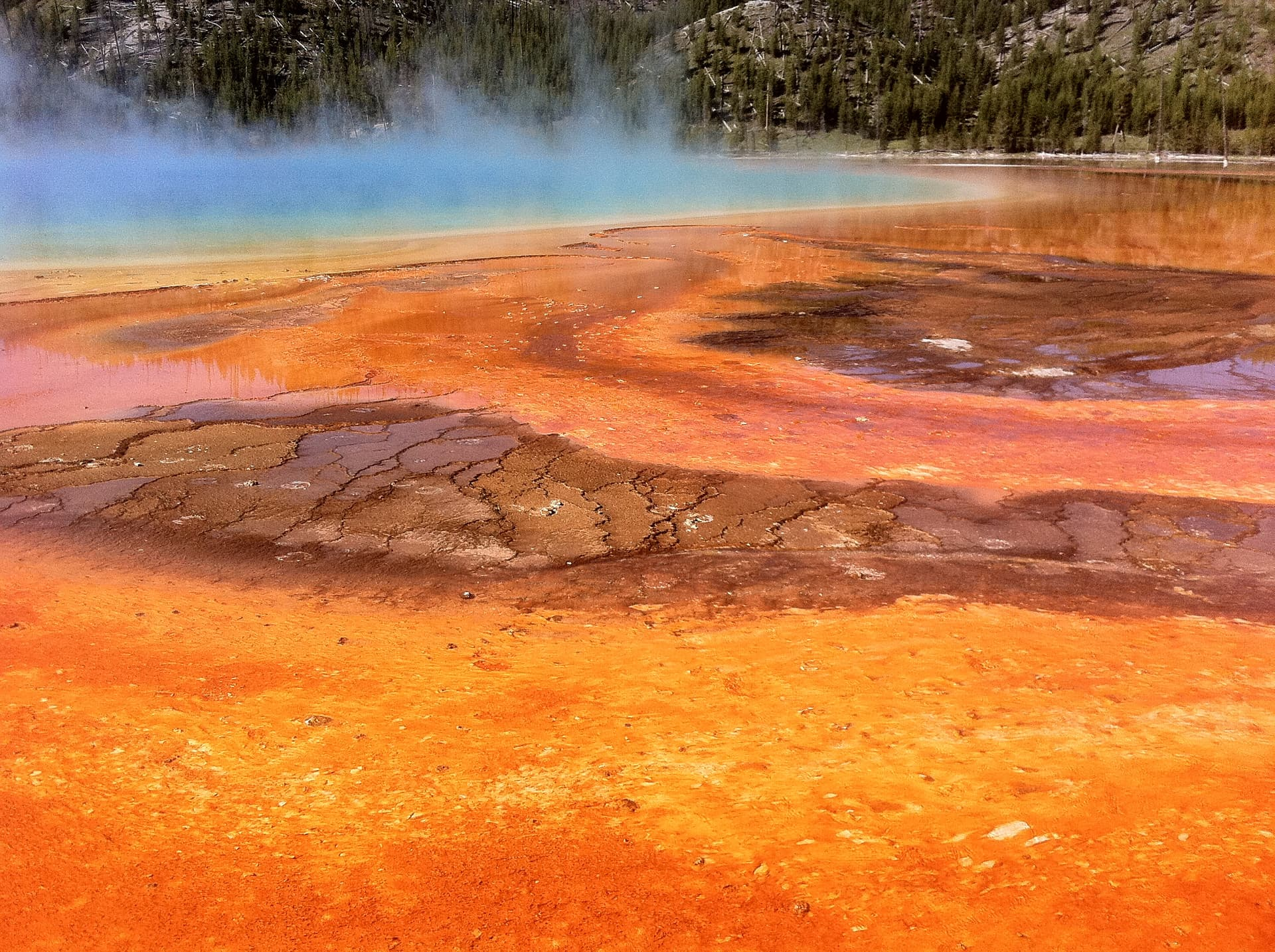 Photo of the Grand Prismatic Spring Yellowstone Park.